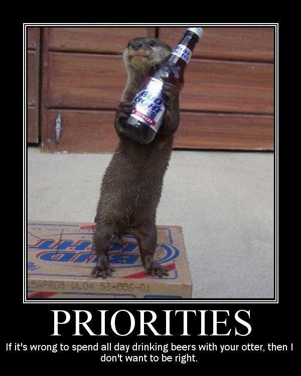 Bud Light Beer Lightweight Drinker Meme Www Imagenesmy Com